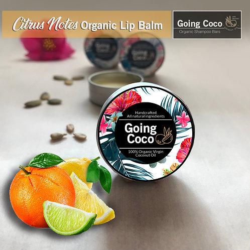 Citrus Notes Organic Lip Balm