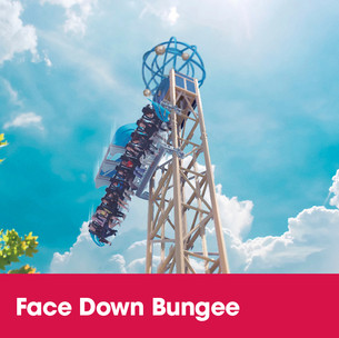 abc-rides-procuts-tower-rides-face-down-bungee.jpg