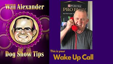 DST wake up call #8 thumbnail .png