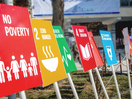 The SDGs and Youth Social Entrepreneurship: A Perfect Fusion to Achieve a Better World by 2030