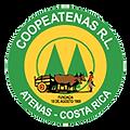 Cope-Atenas-Logo.png