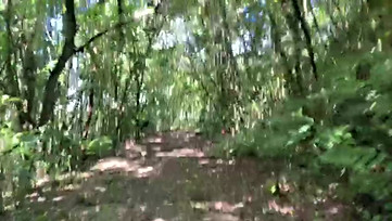 "Sendero ""Secreto"" - ""Secret"" trail"