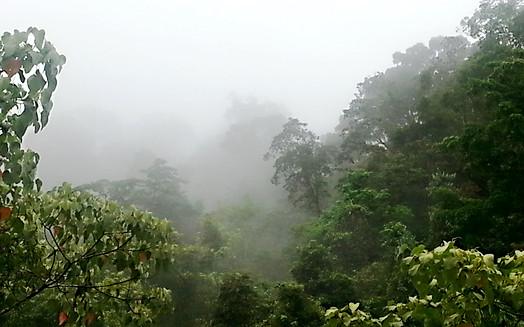 Clima ideal - Ideal climate