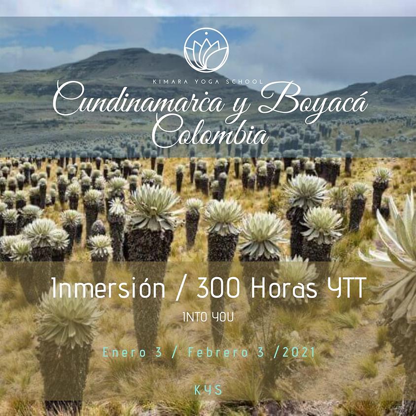 Certificación: 300 Horas- INMERSIÓN - Advanced YTT