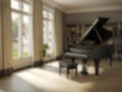 CBC_B212_Black-pol_Living_room_Horizonta