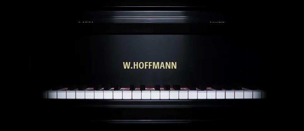 Fallboard-W.-Hoffmann