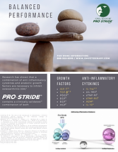 Dowload Pro-Stride (Balanced Performance).png