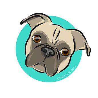 f_dog_portraits_peppi.png