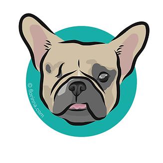 f_dog_portraits_porkbelly.png