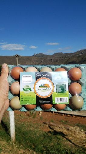 Dùzia de Ovos