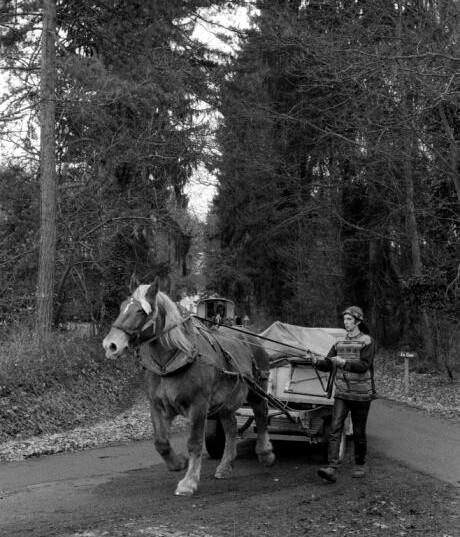 Photo : Jean Pierre Estournet