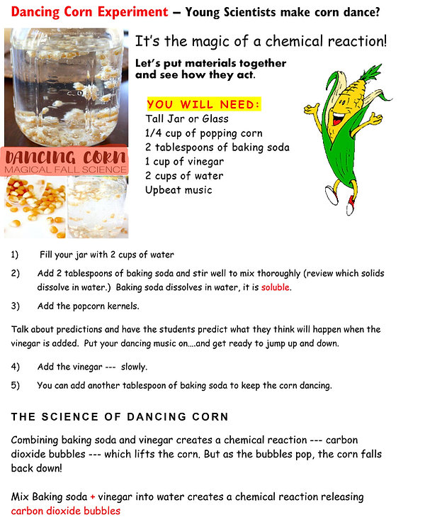 NOVEMBER STEM dancing corn Page 1.jpg