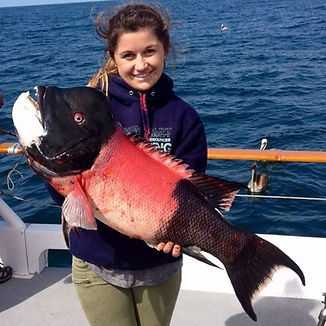 Throwback to a nice 23 pound Sheephead l