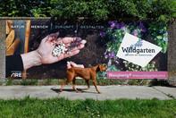 Plakat für Wildgarten