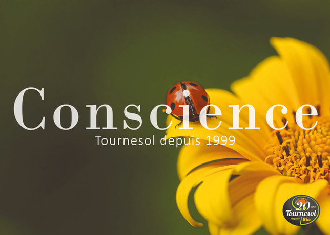 Conscience.jpg