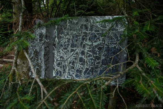 Fenêtre Ouverte sur une bataille de branches.