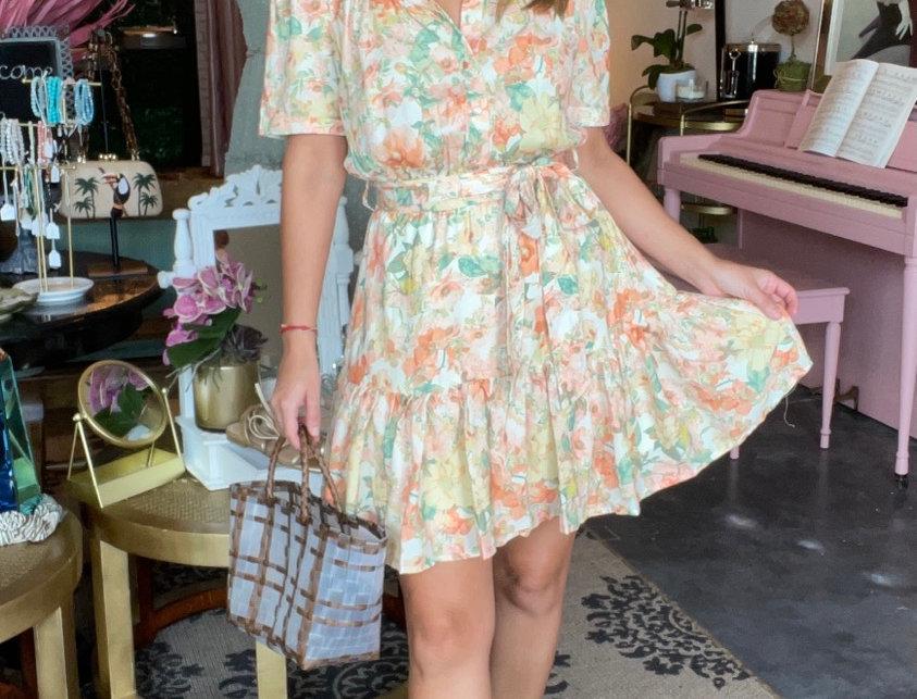 Venice Fit & Flair Mini  Dress