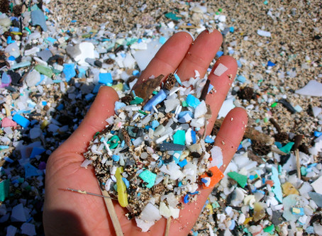 What are the solutions to plastic pollution?