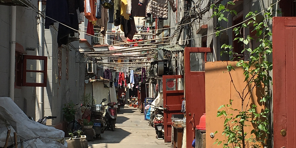 Urban Jungle of Shanghai