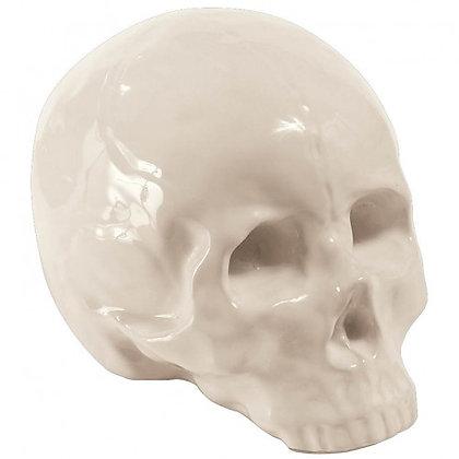 Memorabilia Crâne My skull seletti