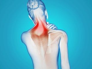 Le fascia, votre meilleur allié, Maux chroniques, stress ou manque de flexibilité: et si la solution
