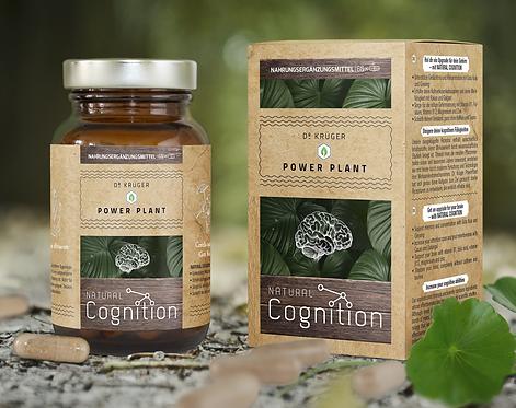 Natural Cognition
