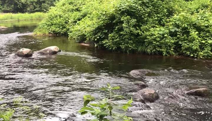Stagnant in the River