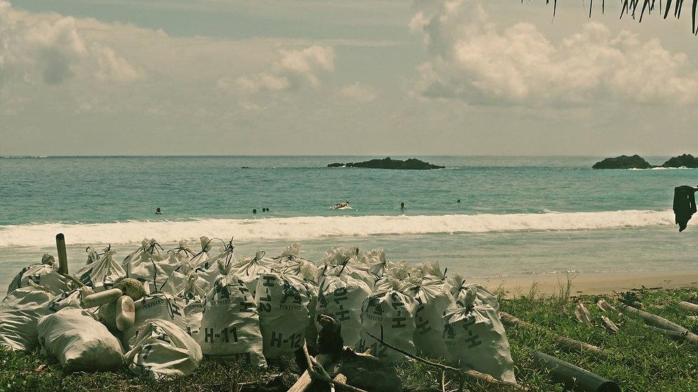 4Pytle vytažené z oceánu