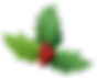 holly-2035434_960_720.png
