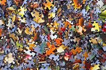 Jigsaw photo.jpg