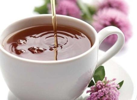 Healthy, Great Herbal Teas
