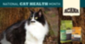 Cat-Month-promo-social-ads_1200x628_no-t