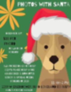 Holiday Pet Photos 2019.jpg