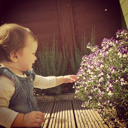 Little #gardenhelper she loves picking and eating #flowers #plants hoping it's a sign she will grow