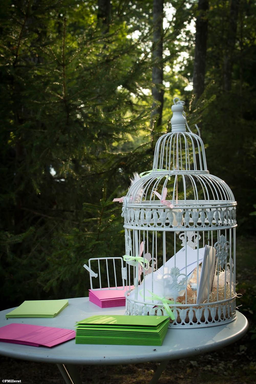 Une jolie cage à oiseaux en guise d'urne de mariage