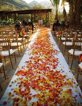 Un tapis de feuilles d'automne pour l'entrée de la cérémonie laïque