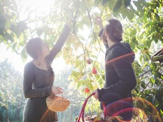 De lavt hængende frugter i arbejdsmiljøet