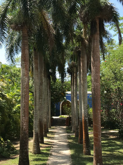 a peaceful path