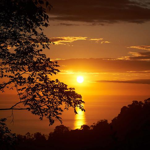 sunset dream