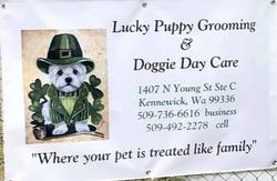 Lucky Puppy