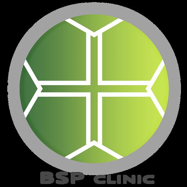 BSP Logo (circ)_02_sm.png
