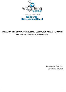 SMWDB Economic Impact of the COVID-19 Pa