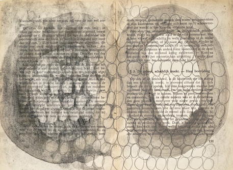 Onze Huisinsekten, 2015 mixed media on paper 20,2 x 27,2 cm