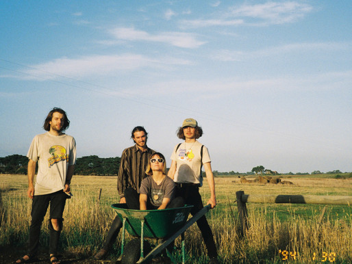 PREMIERE: 'Rounding Up a Bunch of Cats' by Easy Browns