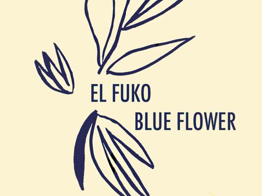 PREMIERE: 'Blue Flower' by El Fuko