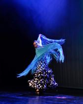 La Mujer de La Danza