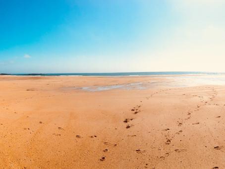 Beautiful Run @ Craster Coastline