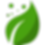 leaf-icon-25.png