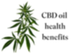 INSTRUCTIONS..how-to-take-CBD-oil.png