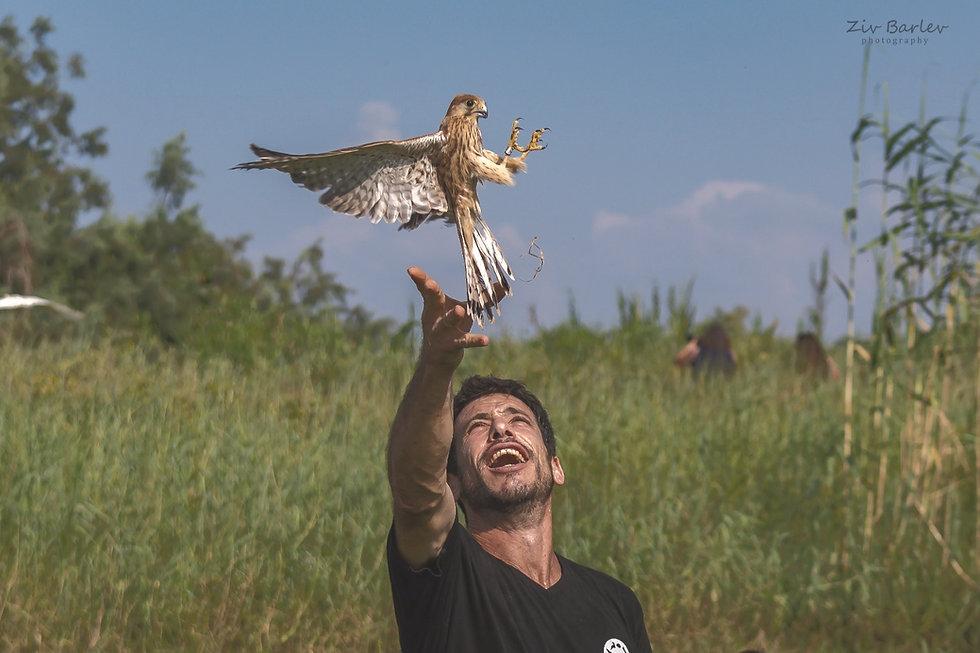 Avihu releasing fre a bird